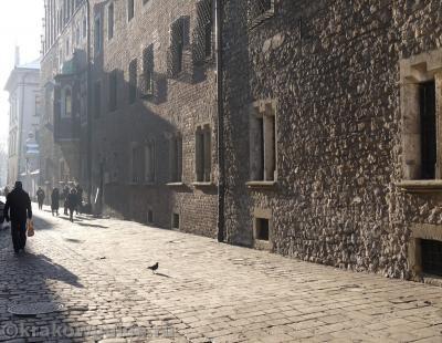 Стены Ягеллонского Университета