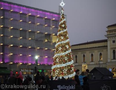Краковская елка