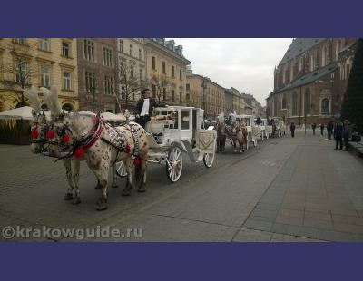 Краков лошадки