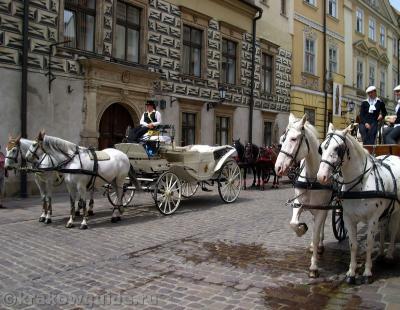 Лошадки на улочке Канонича
